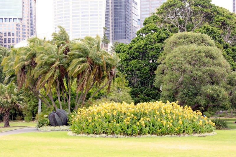 Download Botanical garden stock image. Image of floral, front - 36550169