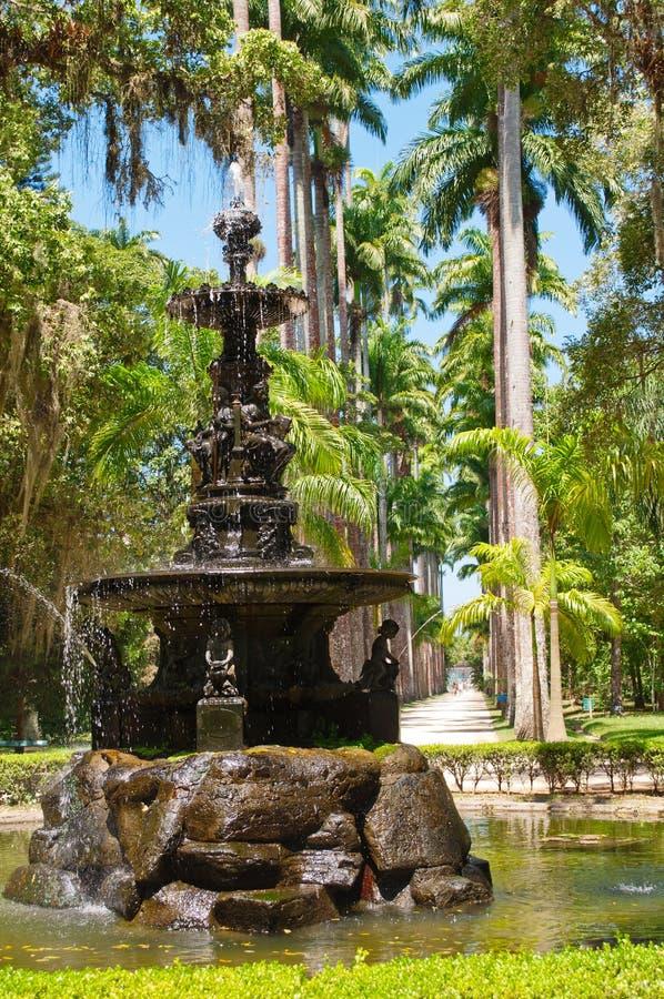 Botanical garden in Rio de Janeiro. The English fountain and palm alley in Botanical garden in Rio de Janeiro. Brazil stock image