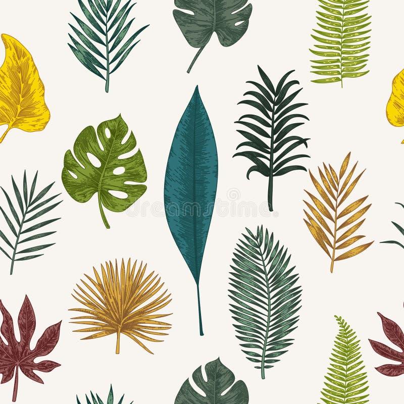 Free Botanical Illustration. Tropical Leaves. Stock Photo - 93096370