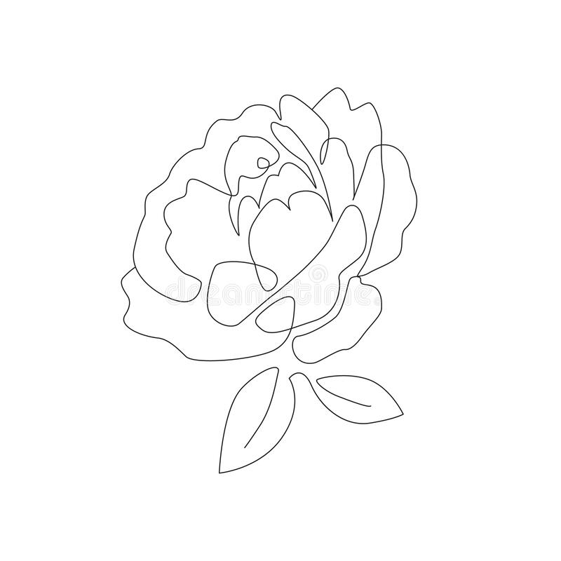 Minimalist Botanical Art Floral Line Art With Peony Flowers And Leaves One Line Drawing For Card Print Tattoo Or Poster Stock Vector Illustration Of Gift Icon 187671006