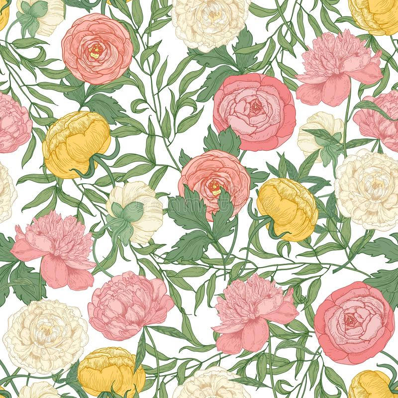 Botanical seamless pattern with gorgeous blooming tulips, peonies and ranunculus flowers on white background. Floral royalty free illustration