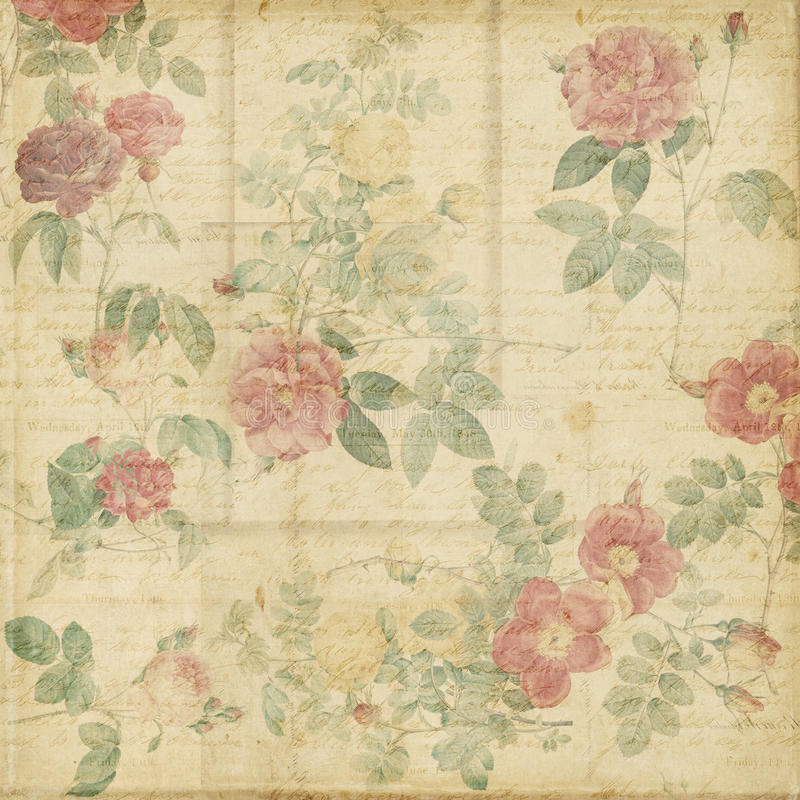 Botanical vintage roses shabby chic background. Or scrapbook paper with vintage text