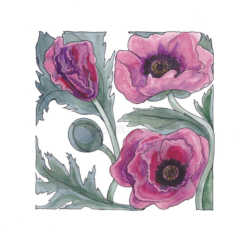 Botanical watercolor illustration of lilac poppy. stock illustration