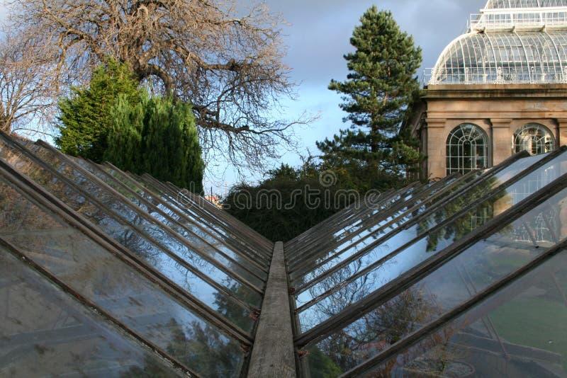 Botanics Edinburgh fotografia stock
