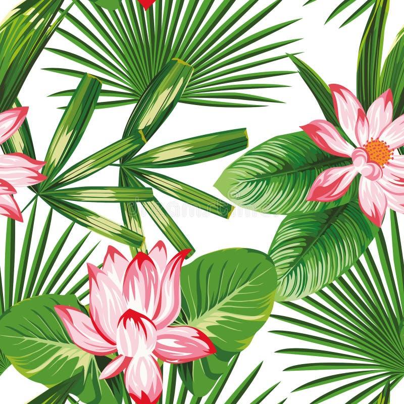 Botaniczna bezszwowa wzór menchii lotosu zieleń opuszcza białego tło royalty ilustracja