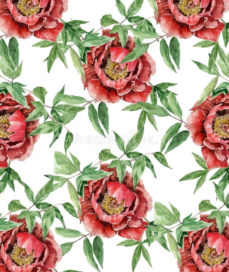 Botaniczna ilustracja obraz stock