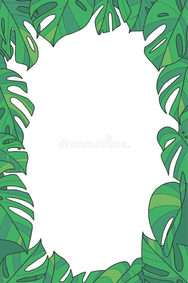 Botaniczna roślina wektoru rama z zieloną egzotyczną Monstera Deliciosa Windowleaf Szwajcarskiego sera rośliną opuszcza na przejr ilustracji