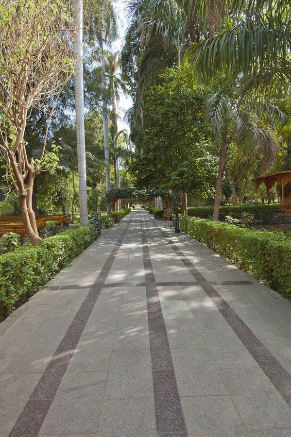 botaniczni Aswan ogródy Egypt zdjęcie stock