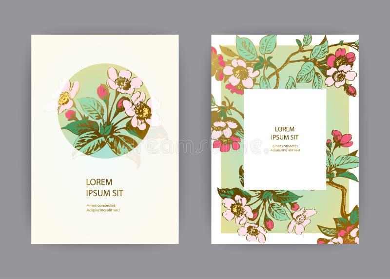 Botaniczny ślubny zaproszenie karty szablonu projekt, ręka rysujący Sakura kwiaty i liście na gałąź, rocznika wiejski czereśniowy ilustracji