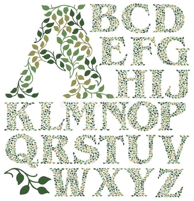 Botaniczny liścia abecadło royalty ilustracja