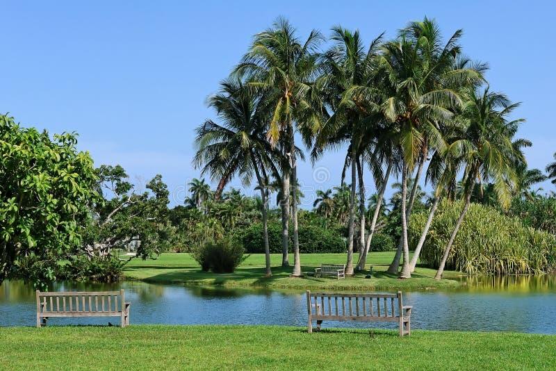 botaniczny tropikalny Fairchild ogrodowy fotografia royalty free