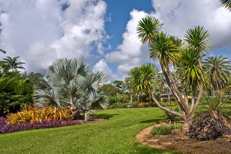 botaniczny tropikalny Fairchild ogrodowy zdjęcie royalty free