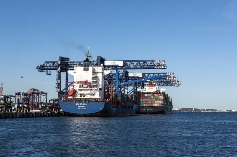Botanique de port et cargos de récipient image libre de droits