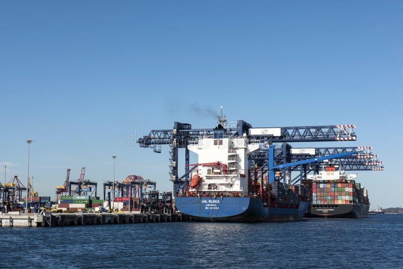 Botanique de port et cargos de récipient photo libre de droits