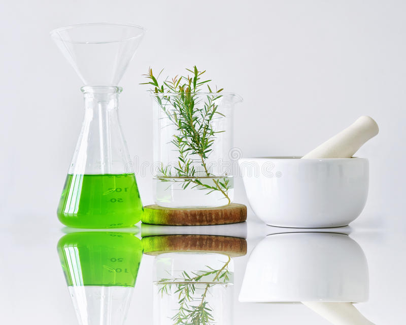 Botanique organique naturelle et verrerie scientifique, médecine alternative d'herbe, produits de beauté naturels de soins de la  photographie stock libre de droits