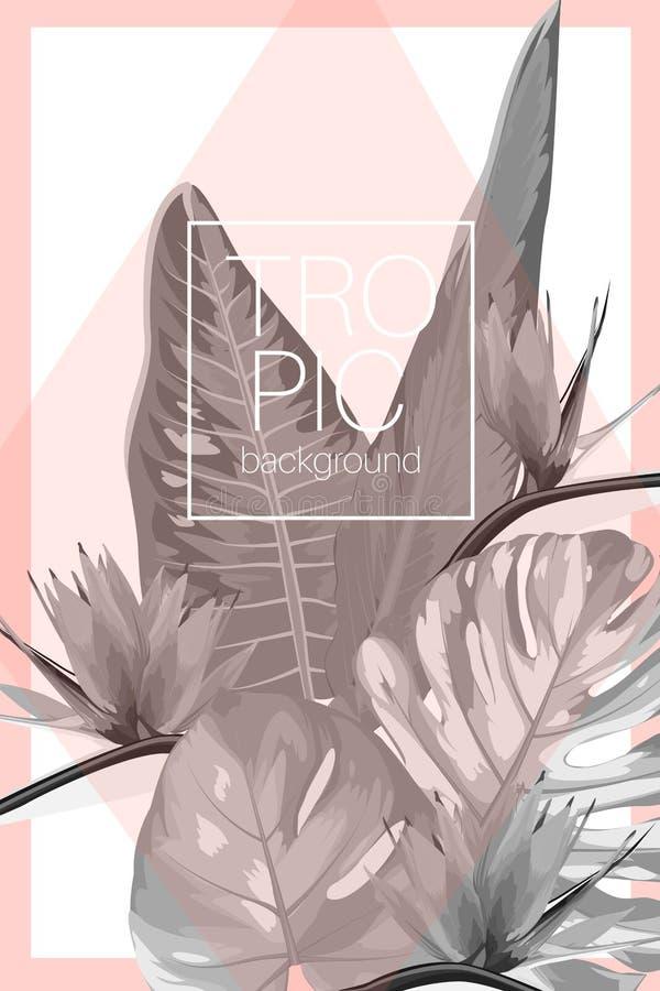 Botanisch exotisch tropisch het malplaatjeontwerp van de uitnodigingskaart Van de strelitziavogel van de Monstera philodendron in stock illustratie