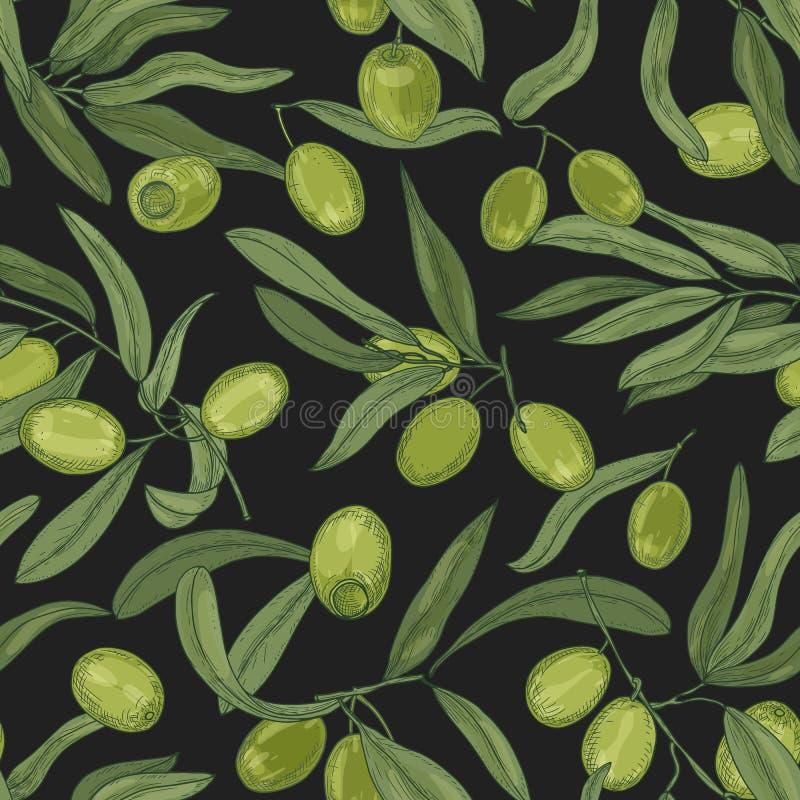 Botanisch naadloos patroon met olijfboomtakken, bladeren, groene verse vruchten of steenvruchten op zwarte achtergrond Elegant vector illustratie