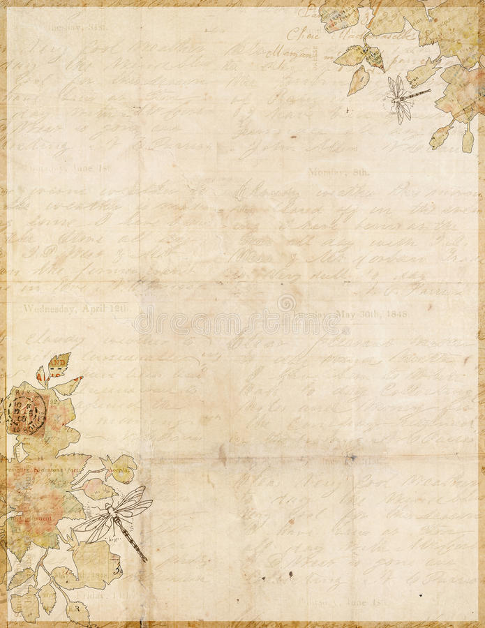 Botanisch sjofel elegant grungy manuscriptdocument vector illustratie