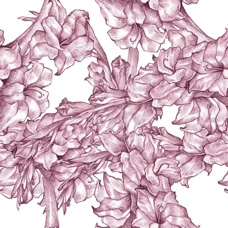 Botanische bloemen van de de tekeningsschets van het bloempotlood naadloze het overladen patroon roze textuur op witte achtergron royalty-vrije illustratie