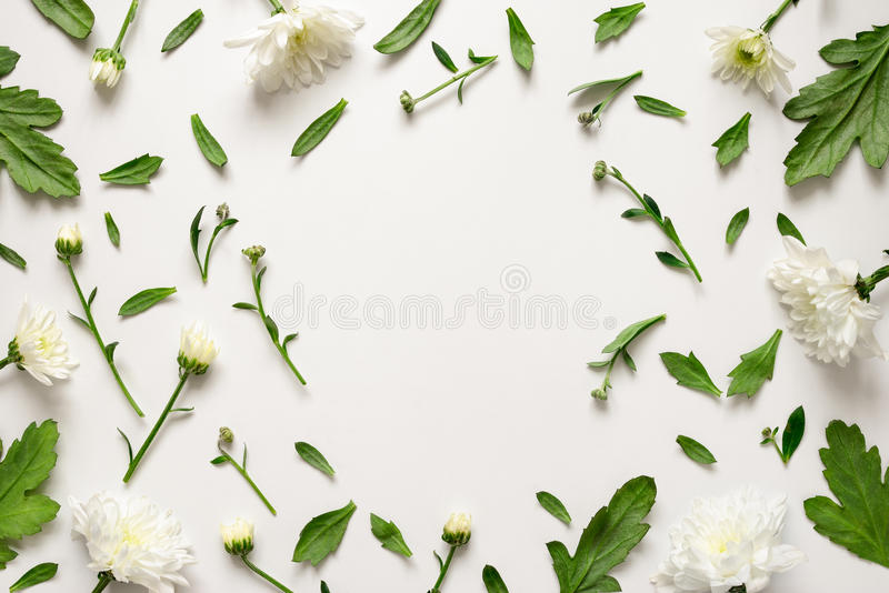 Botanische bloemenachtergrond stock afbeeldingen