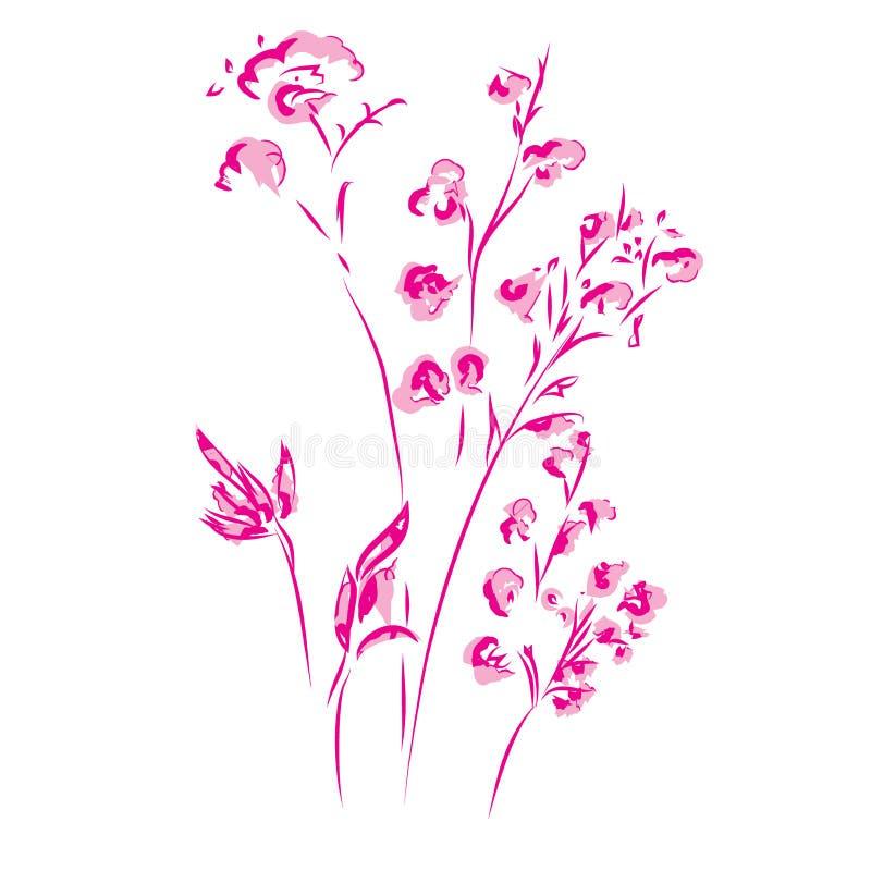 Botanische mit Blumenblume des Vektor-Flachses Wilder Federblatt Wildflower lokalisiert stock abbildung