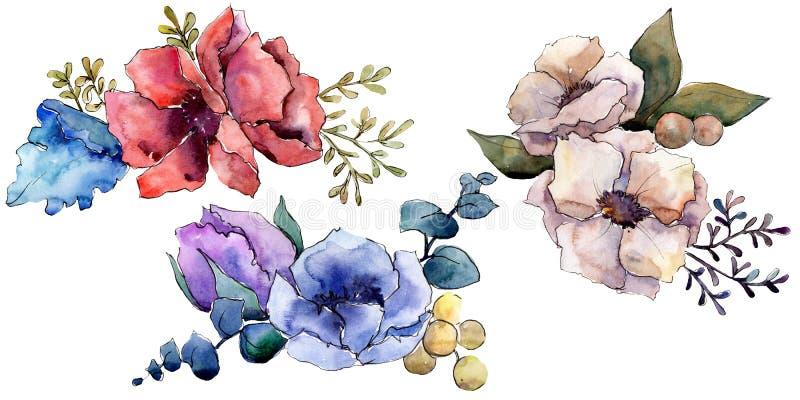 Botanische mit Blumenblumen des Blumenstrau?es Aquarellhintergrund-Illustrationssatz Lokalisiertes Blumenstrau?illustrationseleme lizenzfreie abbildung