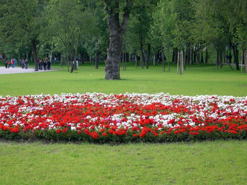 Botanische tuin royalty-vrije stock afbeelding