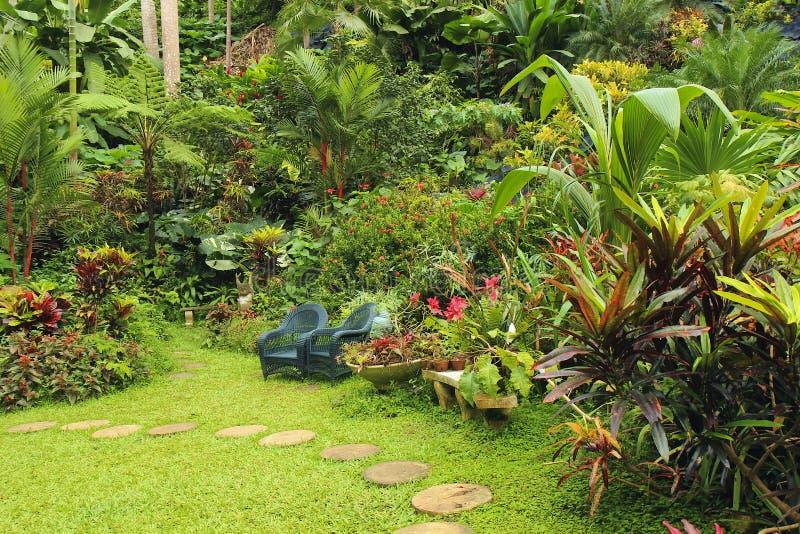 Botanische tuin in Caraïbische Barbados, stock foto's
