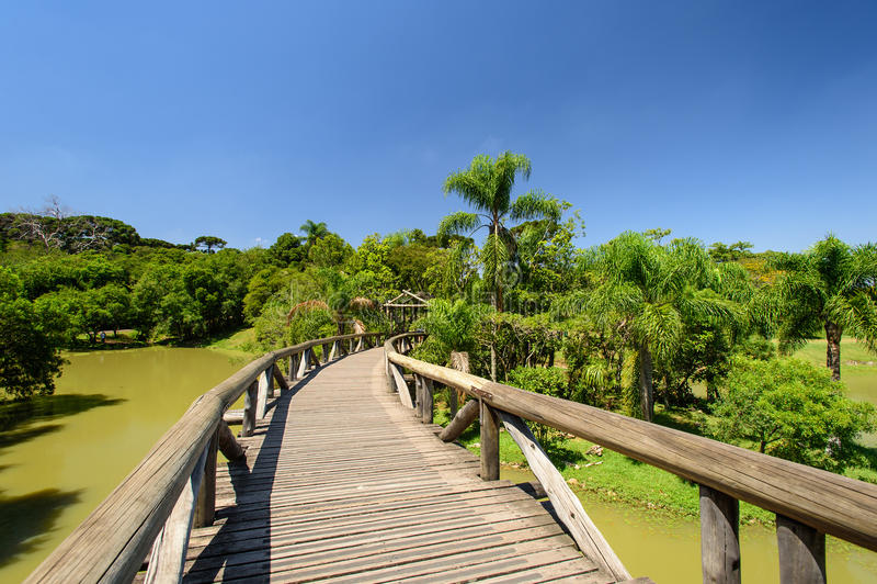 Botanische tuin, Curitiba, Brazilië stock foto's