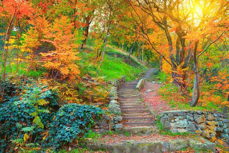 Botanische tuin in Tbilisi stock afbeelding