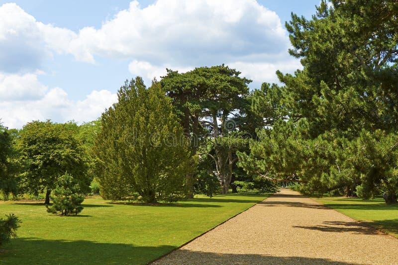 Botanische tuinen in de zomer stock afbeelding