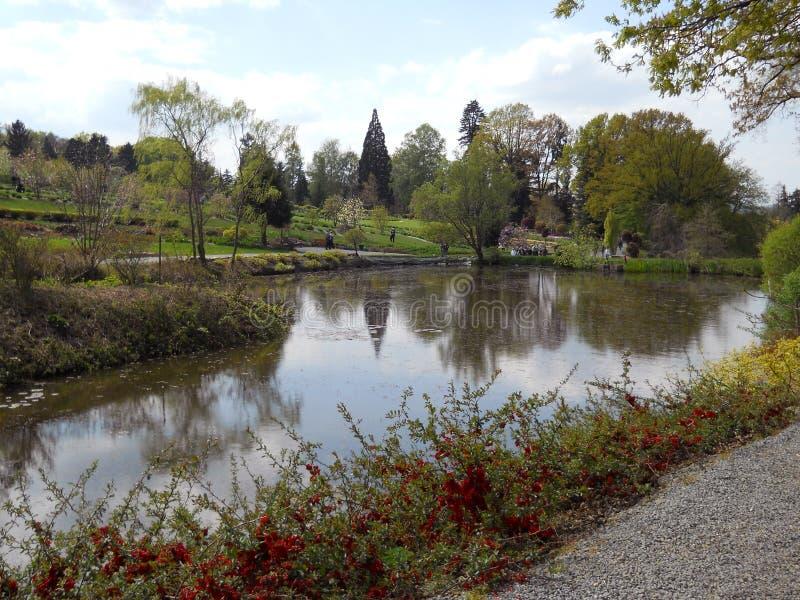 Botanischer Garten in Arboretum WojsÅ-'awice lizenzfreies stockfoto