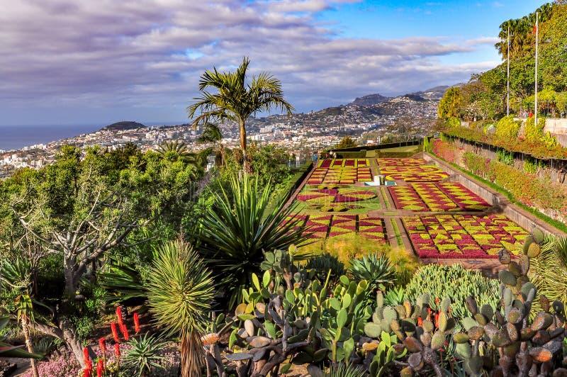 Botanischer Garten in Funchal, Madeira, Portugal stockfotografie