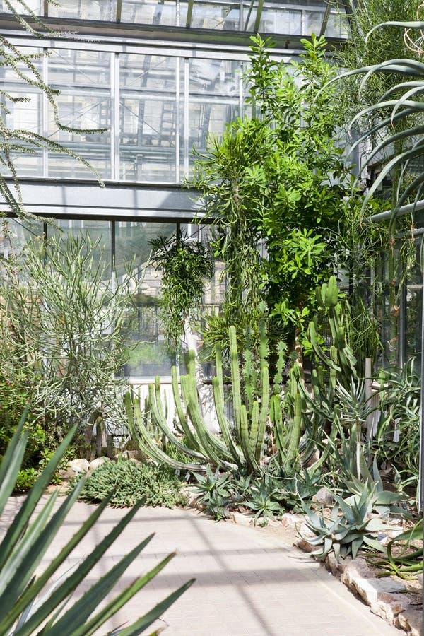 Botanischer Garten-Na Slupi, Prag, Tschechische Republik lizenzfreie stockbilder