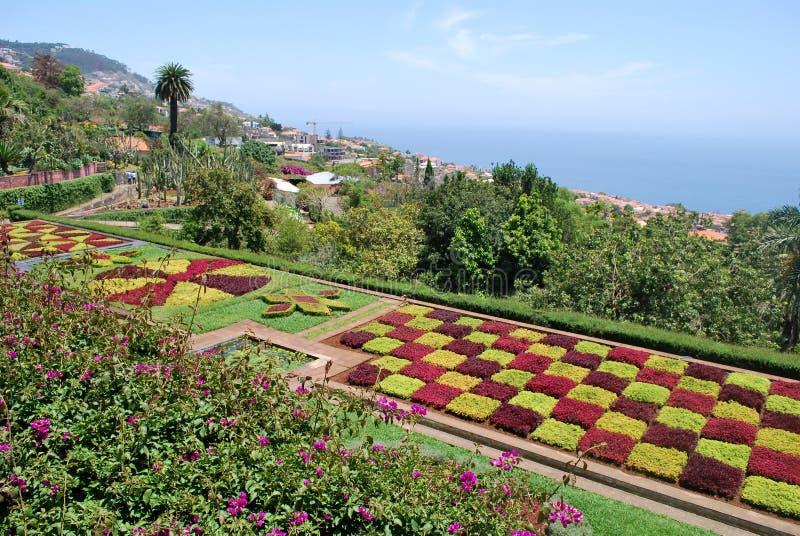 Botanischer Garten von Funchal in Madeira lizenzfreie stockfotografie