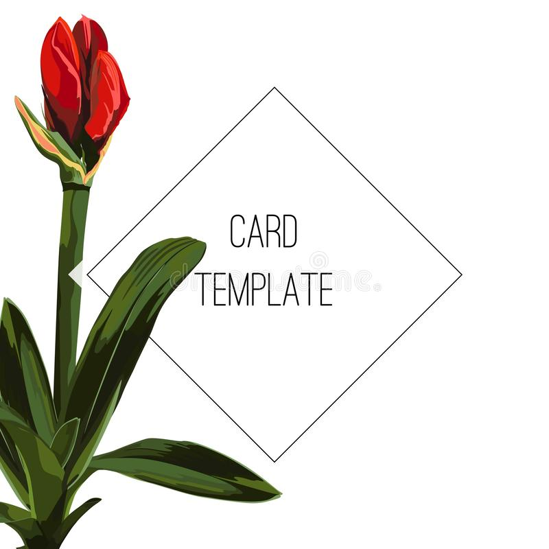 Botanischer Heiratseinladungskarten-Schablonenentwurf, rote Lilienblumenknospe und Blätter mit schwarzem Rahmen lizenzfreie abbildung
