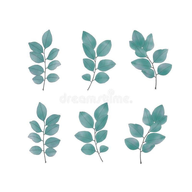 Botanischer Pflanzenblätterhintergrund stockfoto