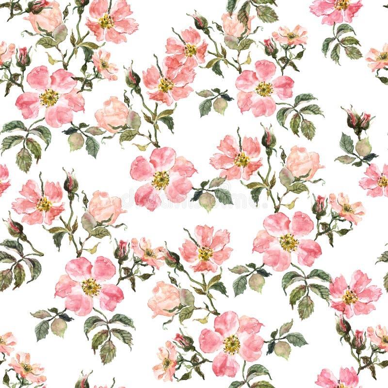 Botanisches nahtloses mit Blumenmuster mit Hagebutte und Blättern auf weißem Hintergrund Wilde Rosen des Aquarells drucken stockfoto