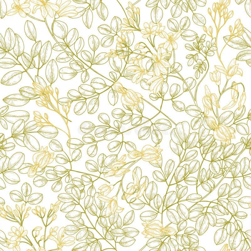 Botanisches nahtloses Muster mit Moringa.oleiferablättern und -blumen Natürlicher Hintergrund mit der Heilpflanze oder Kraut geze lizenzfreie abbildung