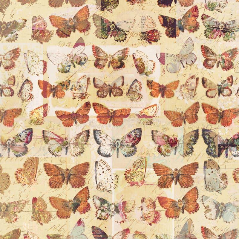 Botanisk bakgrund för antik modell för fjärilar grungy sjaskig chic vektor illustrationer