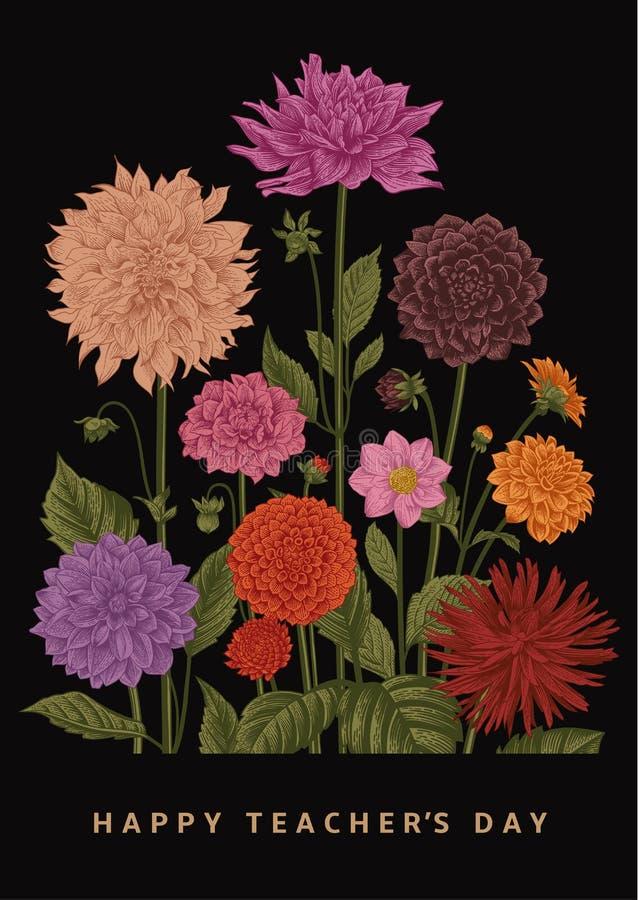 Botanisk blom- illustration för vektor Lycklig dag för lärare` s dahlias royaltyfri illustrationer