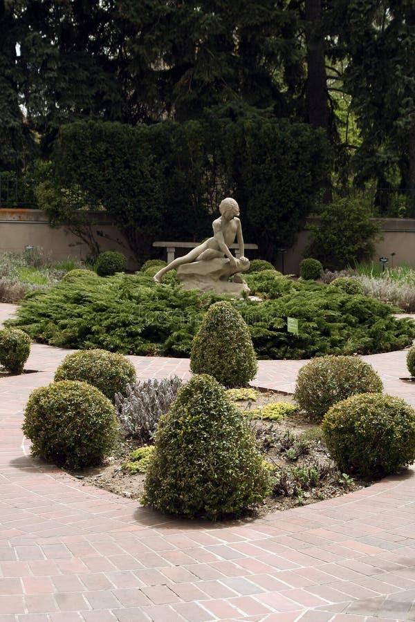 botanisk denver trädgård fotografering för bildbyråer
