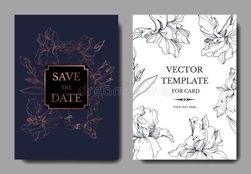Botanisk suckulent blomma för vektordjungel Inristad färgpulverkonstillustration Gifta sig den dekorativa gränsen för bakgrundsko stock illustrationer