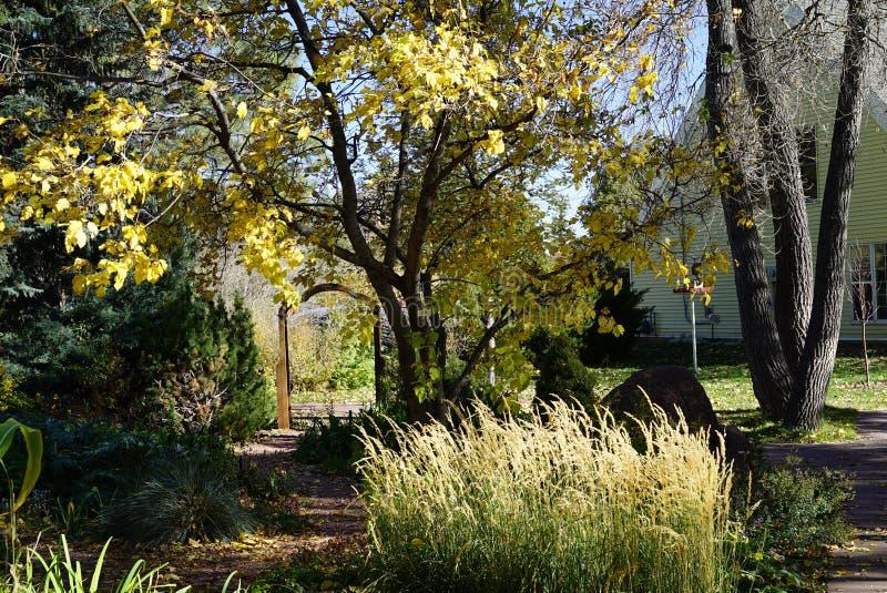 Botanisk trädgård Cheyenne, Wyoming royaltyfri fotografi