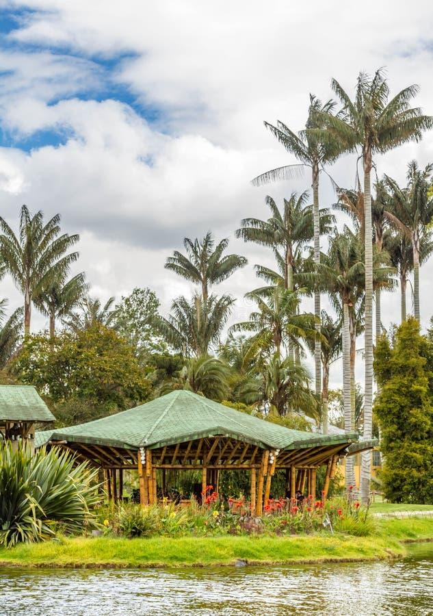 Botanisk trädgård i Bogota, Colombia royaltyfri fotografi