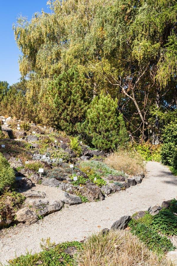 Botanisk trädgård nära Belvedereslotten, Wien arkivbild