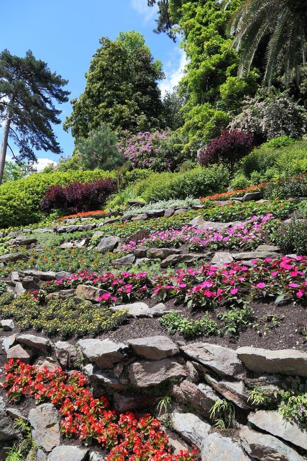 Botanisk trädgård på villan Carlotta, Tremezzo, Italien royaltyfri fotografi
