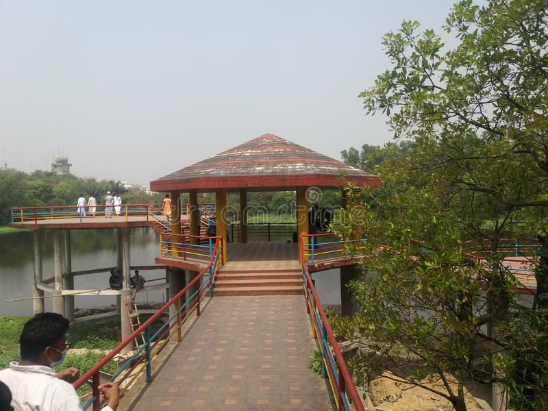 Botanisk tr?dg?rd sj? av dhaka, Bangladesh royaltyfri fotografi