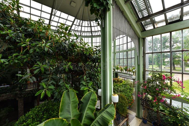 Botanisk trädgård växthus, Kretinga, Litauen royaltyfria foton