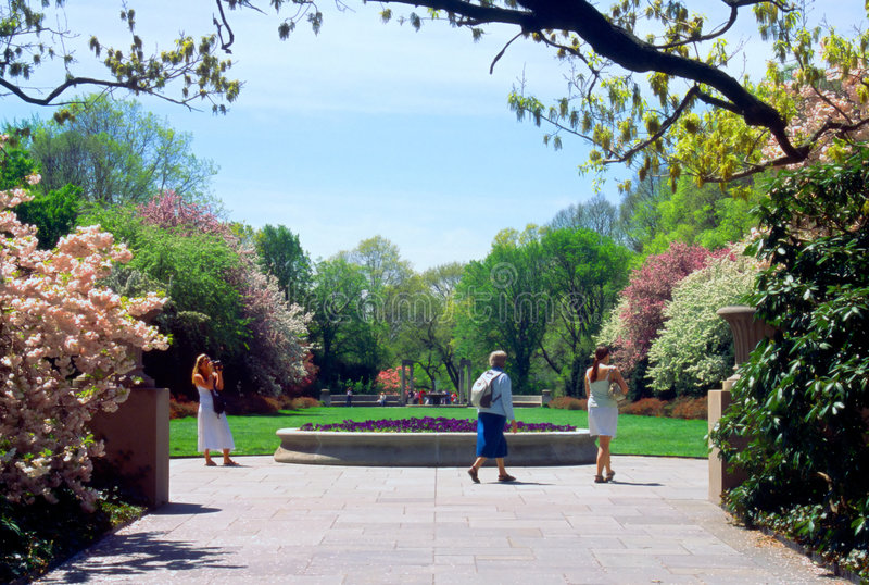 botaniska brooklyn trädgårds- New York royaltyfria bilder